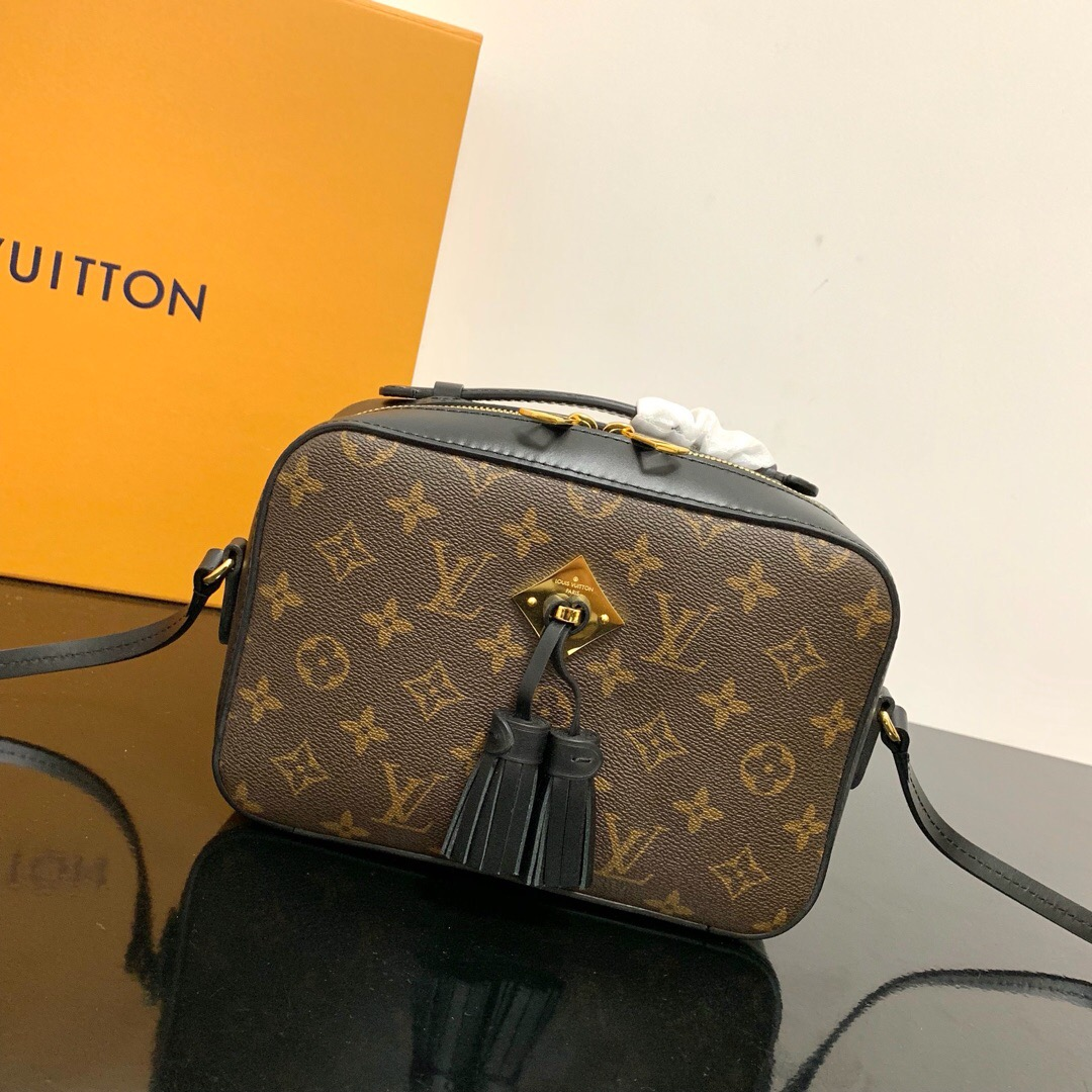 Louis Vuitton M43555 Saintonge Monogram Coated Canvas and Smooth Calfskin Leather